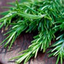 Rosemary Leaf Extract - Organic Skin Care
